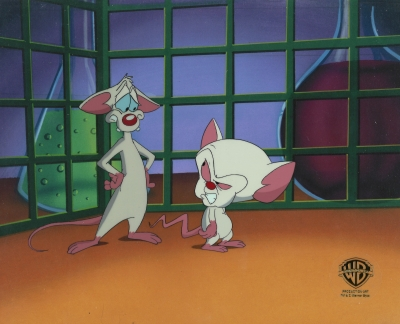 Pinky and the Brain 5746