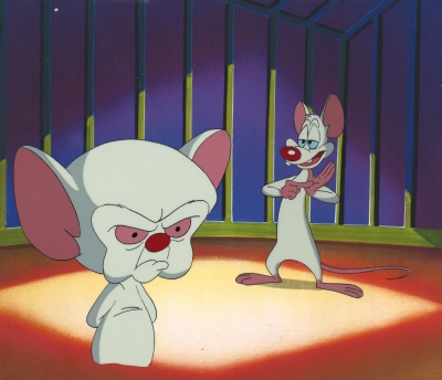 Pinky and the Brain 5800