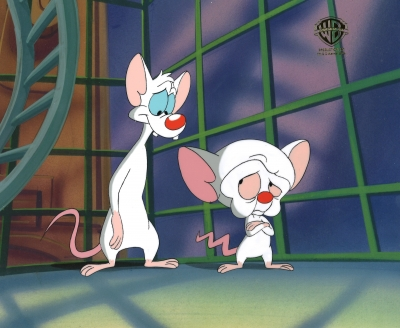 Pinky and the Brain 5832